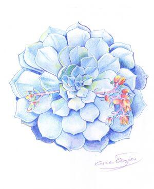 ilustracion-06-carmen-casquero-611x750