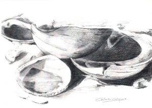 CONCHAS - Papel lápiz - 40x30cm