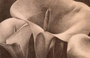 CALAS - Papel lápiz - 52x33cm